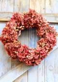 Autumn wreath of faded hydrangea flowers — Stock Photo