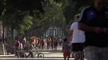 Cuba La Habana Havana People Walking Along Prado Park — Stockvideo