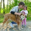 Family Life With Happy Mother And Child Walking Dog Outdoor — Stock Video #70514067