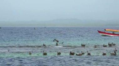 San Blas Islands Panama Central America-4 — Stock Video