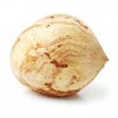 Dried Hazelnut — Stock Photo