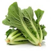 小白菜 — ストック写真