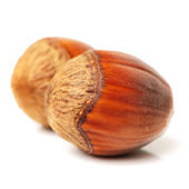 Brown Hazelnuts — Stock Photo