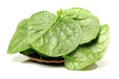 Fresh  spinach vegetable leaves — Stock Photo