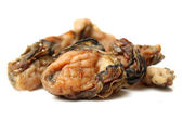 Dried oysters — Stock Photo
