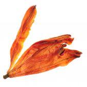 Dried lily tea — Foto de Stock