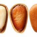 Pine nut — Stock Photo #53121507