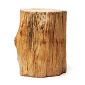 Log isolated — Stock Photo