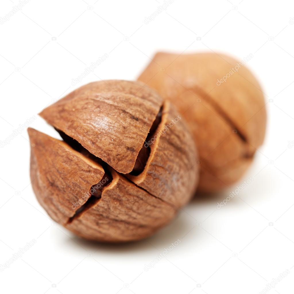 Hickory Nuts Stock Images - Image: 6655584