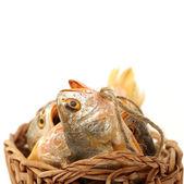 Yellow Croaker Fish — Stock Photo
