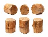 Log isolerade — Stockfoto