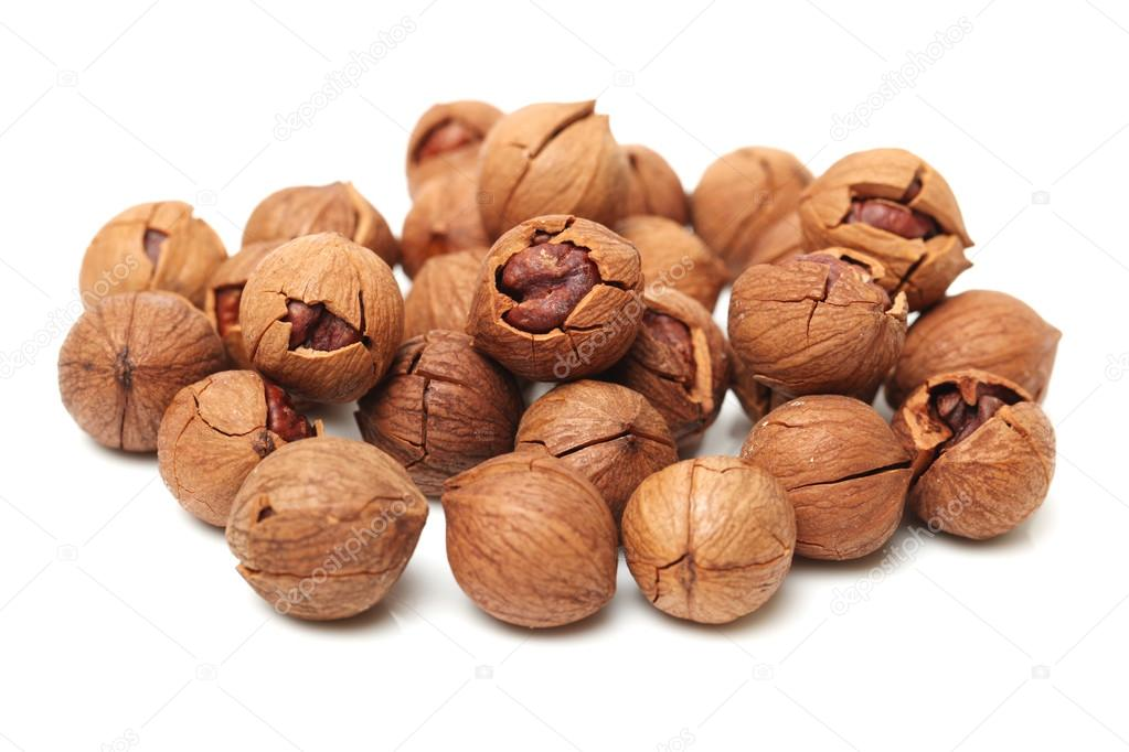 Shagbark hickory nuts — Stock Photo © jianghongyan #53565229