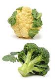 Cauliflower and broccoli pieces — Stock Photo