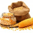 Постер, плакат: Corn and corn seeds