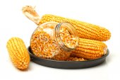 Corn and corn seeds — Stock Photo