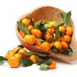 Ripe tangerines with leaves — Stock Photo #60656069