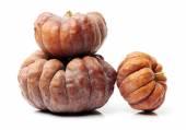 Three Orange pumpkins — Stock Photo