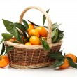 Ripe fresh tangerines — Stock Photo #60695719