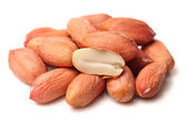 Peanuts kernels — Stock Photo
