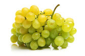A cluster of white grapes — Stock Photo