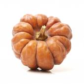 Orange pumpkin on white — Stock Photo