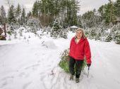 Active Senior Woman Cuts A Christmas Tree — Stock Photo