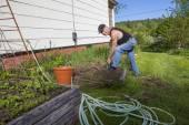 Senior Man Digging In His Backyard Vegetable Garden — Stock Photo