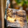 Hive in an apiary with bees flying to the landing board in a gar — Stock Photo #81017032