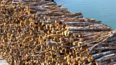 Heap of pulpwood for fire on display on the harbour of Estonia GH4 — Vídeo de stock