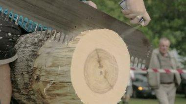 Un concours journal de coupe avec une scie à grosse — Vidéo