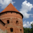 Big dome tower of castle — Stock Video #55248101