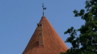 Pyramid roof with a wind vane on top — Stock Video