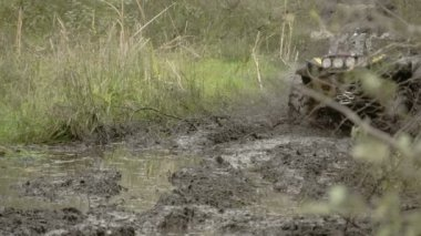 A 4x4 offroad vehicle splunging on the mud  FS700 4K — Stock Video