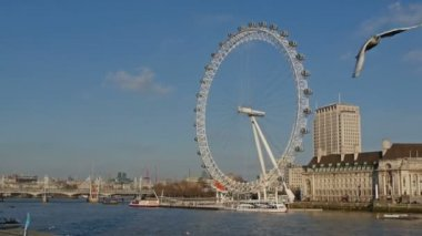View to the London Eye — Stock Video