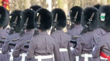 The palace guards holding their guns marching — Stock Video