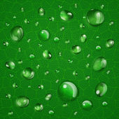 Background with drops on green leaf — Stockvector