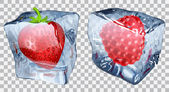 Transparent ice cubes with strawberry and raspberry — Stock Vector