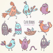 Cute birds — Stock Vector