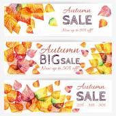 Autumn sale banner — Stock Vector