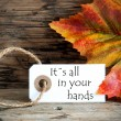 Fall Label with the Words Its all in your Hands — Stock Photo #51857289