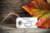 Autumn Label with There is Always a Reason to Smile — Stock Photo
