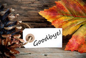 Autumn Label with Goodbye — Foto de Stock