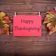 Red Tag with Happy Thanksgiving — Stock Photo #52807795