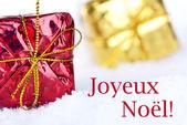 Joyeux Noel in the Snow — Stock Photo