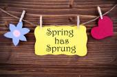 Yellow Label With Life Quote Spring Has Sprung — Стоковое фото