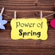 Yellow Label With Life Quote Power Of Spring — Stock Photo #61510107