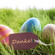 Happy Easter Background With Colorful Eggs And Label With German Text Danke — Stock Photo #61510289