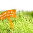 Label With German Endlich Fruehling Which Means Spring On Green Grass — Stock Photo #62008129