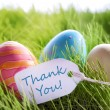 Happy Easter Background With Colorful Eggs And Label With Text Thank You — Stock Photo #62008163