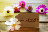 Sunny Label With German Text Auszeit With Cosmea Blossoms — Zdjęcie stockowe